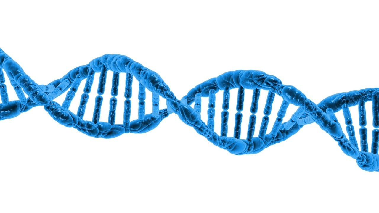 Test genético enfermedades