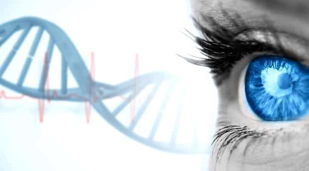 informacion-genetica