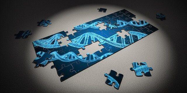 adn_cadena_testamento_genetico
